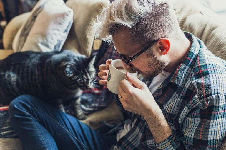 5 Gründe eine Katze zu haben