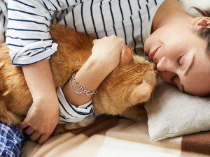 19 Anzeichen, dass deine Katze dich liebt